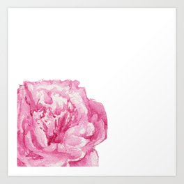 Pink Peony on White Art Print