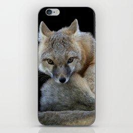 Eyes of the Fox iPhone Skin