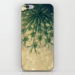 Queen anne's lace 01 iPhone Skin
