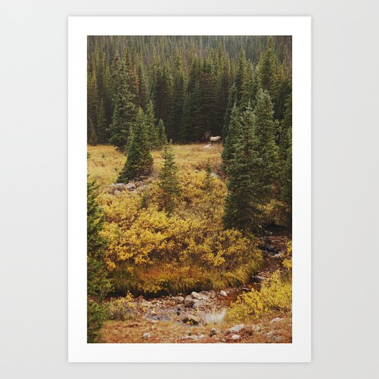 Rocky Mountain Creek Elk Art Print