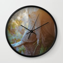 Beautiful elephant Wall Clock