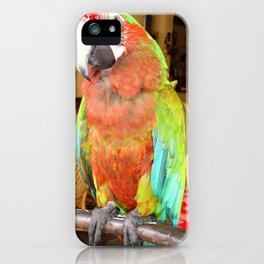 Harlequin Macaw On A Perch iPhone Case