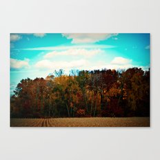 All the colors of mother nature Canvas Print