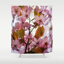 Hanami sakura Shower Curtain