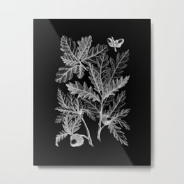 Mighty Oak Leaves Vintage Illustration Metal Print