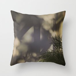 Light & Shadows #6 - 2014 Throw Pillow