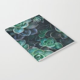 Succulent Blue Green Plants Notebook