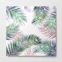 palm leaves tropical by rodrigomffonseca