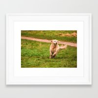 golden retriever Framed Art Prints featuring Retriever by NCP Photography