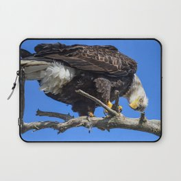 Alaskan Adult Bald_Eagle - Quizzical Laptop Sleeve