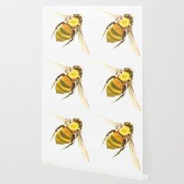 Bee, bee art, bee design Wallpaper