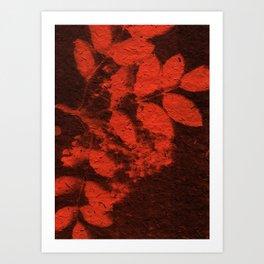 Botanicus (66) Art Print
