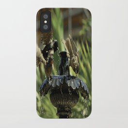 Rowdy Bird Bath iPhone Case