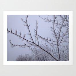 Frozen Fog Art Print