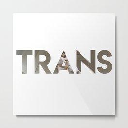 Trans David Metal Print