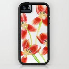Tulip Love iPhone Case