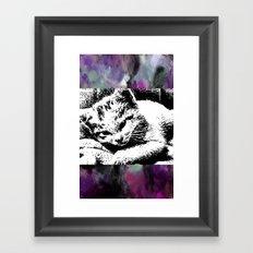 cat-60 Framed Art Print