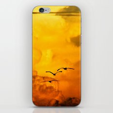 Flight at the Golden Hour iPhone Skin