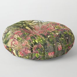 Wild Succulent Plant Aloe Flowers Countryside, South Africa Floor Pillow