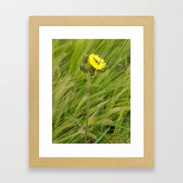 Always room for one more by Laila Cichos Framed Art Print