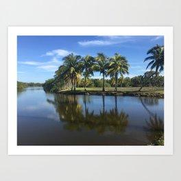 Lagoon Palms Art Print