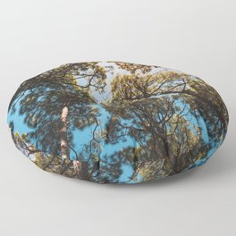 Trees and sky in sunlight- forest landscape - nature photography Floor Pillow
