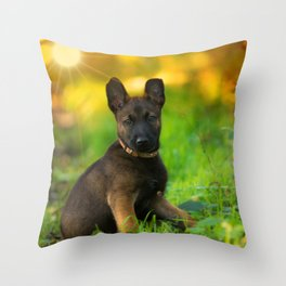 Wonderful autumn forest with curious dog puppies Throw Pillow