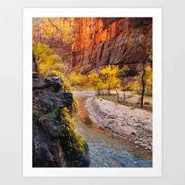 Colors of Zion Fine Art Print Art Print
