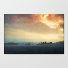 Layers of Silence Canvas Print