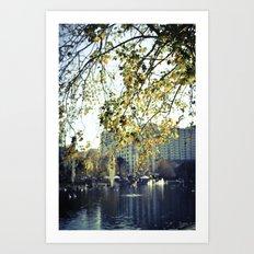 Lake Eola  Art Print