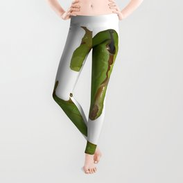 Green Tree Frog Leggings