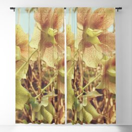 Spring Hellebore Blackout Curtain