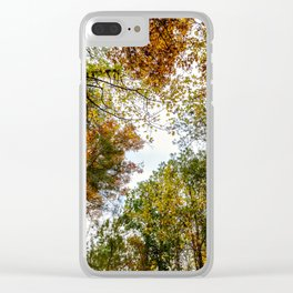 Fall Tree Tops Clear iPhone Case