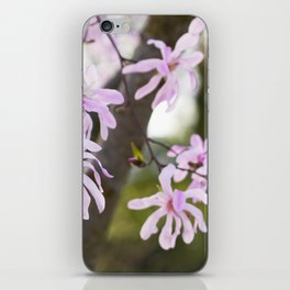 Pink Magnolia iPhone Skin