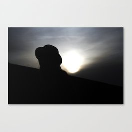 Myterious Stranger Canvas Print