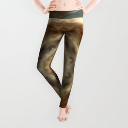 LION - Aslan Leggings