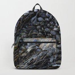 Mussel Bed on Ocean Weathered Rocks Backpack