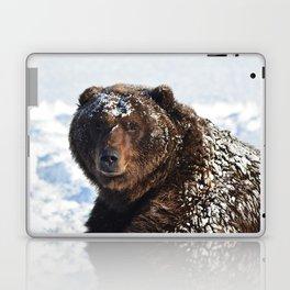 Alaskan Grizzly in Snow Laptop & iPad Skin