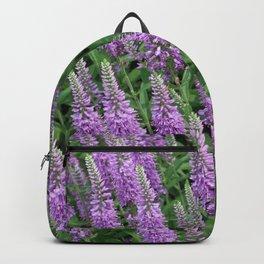A Field of Purple Flowers Backpack