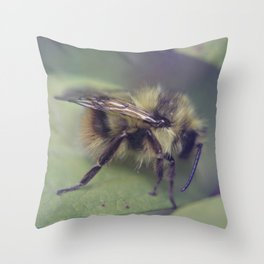 Soft Focus Throw Pillow