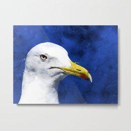 gull, head, portrait Metal Print