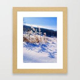 Frozen Wonderland Framed Art Print