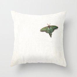 Vitrail  Throw Pillow