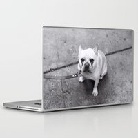 french bulldog Laptop & iPad Skins featuring French Bulldog by Alev Takil