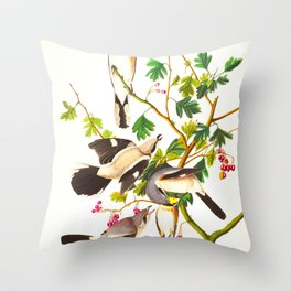 Great Cinereous Shrike, or Butcher Bird Throw Pillow