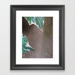 008 Framed Art Print