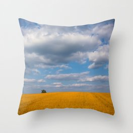 Spring Grove Field Throw Pillow