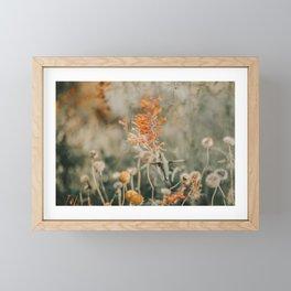 The Hummingbird Wings Framed Mini Art Print