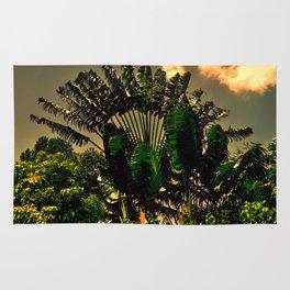 Tropical Scene 12 Rug