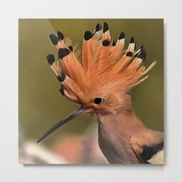 Beautiful Hoopoe Bird With Crown Of Feathers Metal Print
